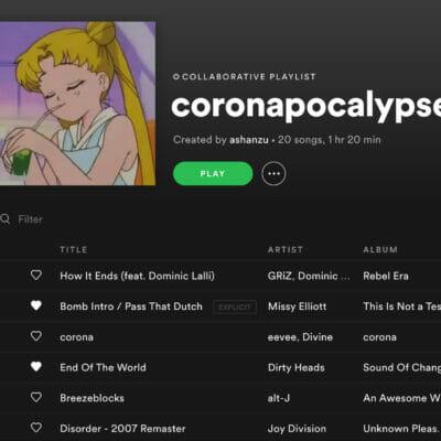 screenshot of a spotify playlist